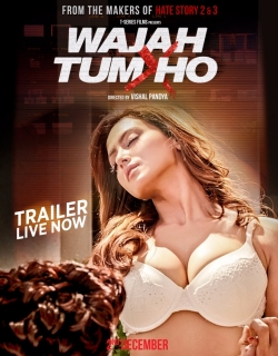 Wajah Tum Ho - All Songs Lyrics