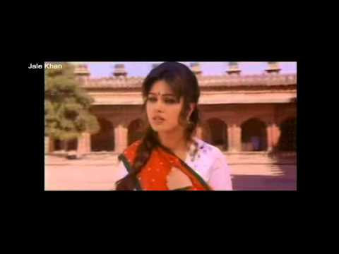 pardes my first day in usa