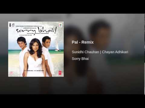 Pal Yeh Pal (Remix) Lyrics - Sorry Bhai
