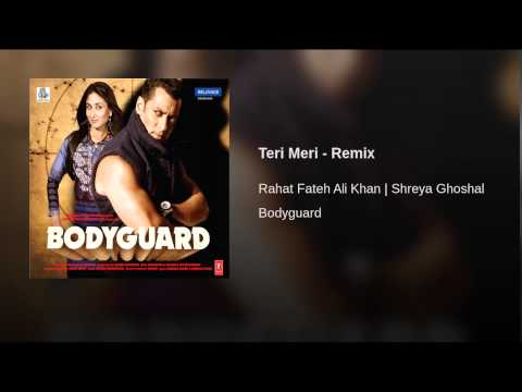 Teri Meri (Remix) Lyrics