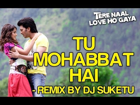 Tu Mohabbat Hai (Remix) Lyrics