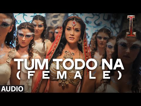 Tum Todo Na (Female Version) Lyrics - I