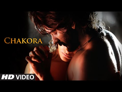 Aasman Par Ude Chakora Lyrics - Mirzya - Dare To Love